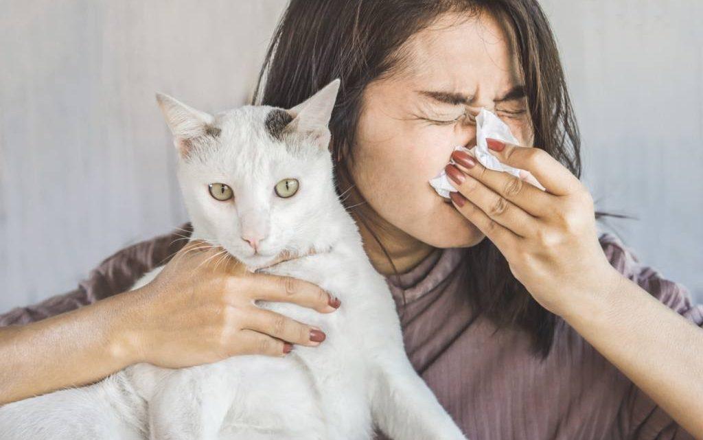 Alergia a las mascotas, si es posible